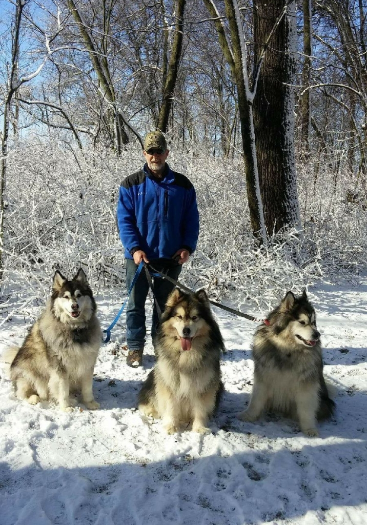 Bruce with dogs 2